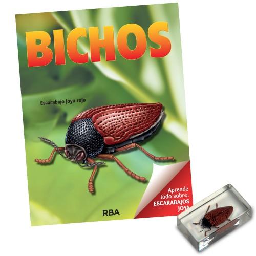 Escarabajo joya rojo